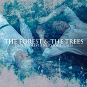 To The Forest (I Need Some Peace)