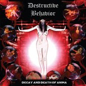 Decay and Death of Anima