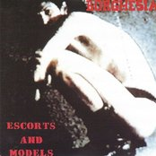 Escorts and Models