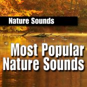 Most Popular Nature Sounds