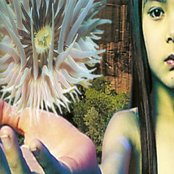Lifeforms (disc 1)