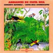 Ambiances du Costa-Rica - Costa-Rica Soundscapes