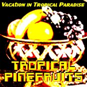 Vacation in Tropical Paradise