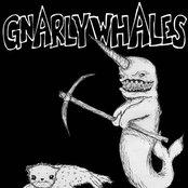 TragWag/Gnarly Whales 7inch Split