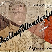 Feeling Wonderful the EP