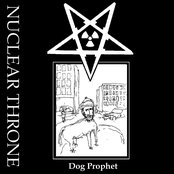 Dog Prophet cds