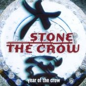 year of the crow