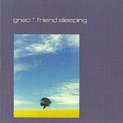 Friend Sleeping