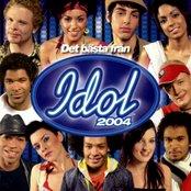 Det Bästa Från Idol 2004