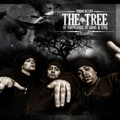 The Tree Of Knowledge Of Good & Evil