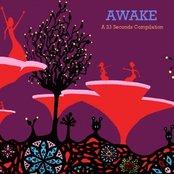Awake (2008)