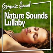 Nature Sounds Lullaby (Nature Sound)