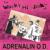 The Wacky Hi-Jinks of...
