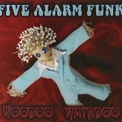 Voodoo Hairdoo