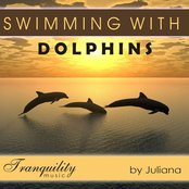Swimming with Dolphins - Featuring Juliana