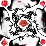 Blood Sugar Sex Magik (Deluxe Version)