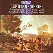 Luigi Boccherini: Quintetti per flauto