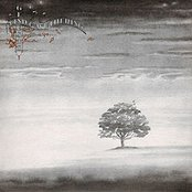 Wind & Wuthering (Remastered) [Bonus Video Version]