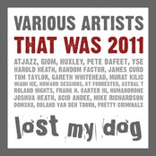 That Was 2011: Lost My Dog