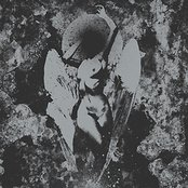 Converge / Dropdead Split