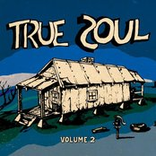 True Soul: Deep Sounds from the Left of Stax Vol. 2