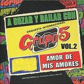 A Gozar y Bailar Con Grupo 5, Vol. 2