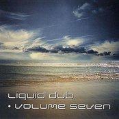 Liquid Dub Vol 7