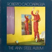 The Ann Steel Album