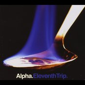 Eleventh Trip