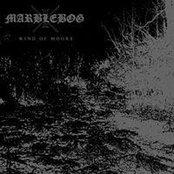 Wind Of Moors CD