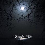 Moonlit Wake Demo