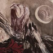 album Untitled (2015) by False