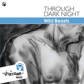Through Dark Night