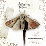 Beyond The Butterfly...