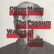 The Possom Wakes At Night