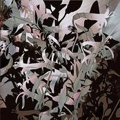 album Monochrome EP by Mujuice