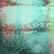 Song Sparrow Research