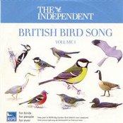 British Birdsong