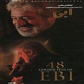 48 Golden Hits Of Ebi