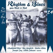 Rhythm & Blues Goes Rock & Roll, Vol. 24