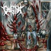 Sadistic Reflections of Blood