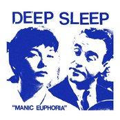 Manic Euphoria