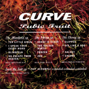 album Pubic Fruit by Curve