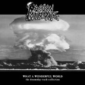 What a Wonderful World: The Doomsday-Track-Collection