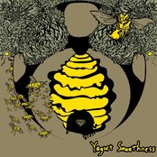 The Diamond Through the Bees