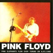 Pink Elephants Flew Over Torino on 6/07/1988 (disc 2)