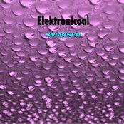 Elektronicoal