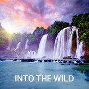 Into the Wild - Sounds of Nature and Nature Music for Relaxation Meditation and Yoga. Natural White Noise and nature Sound Effects for Music Thearpy, Massage, Healing Méditation, Tai Chi and Reiki