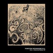 Pinecone Moonshine: External Matter