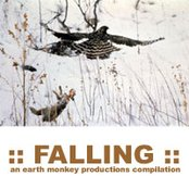 ::FALLING:: an earth monkey compilation